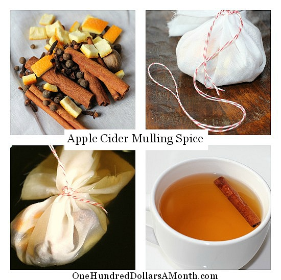 Easy Kitchen Tips – Apple Cider Mulling Spice Recipe
