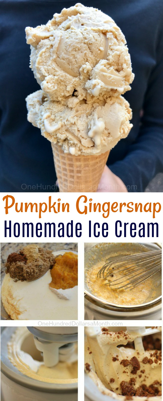 Thanksgiving Dessert Recipes – Pumpkin Gingersnap Ice Cream