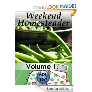 Free Amazon Kindle Books – Cave Man Recipes, Weekend Homesteader, Soup and Ladybugs