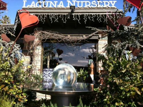 laguna nursery laguna beach california