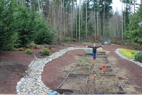 Mavis Butterfield   Backyard Garden Plot Pictures – Week 1 of 52