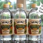 Frugal Living Tip – 10 Cool Uses for Vinegar