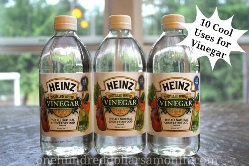 10 cool uses for vinegar