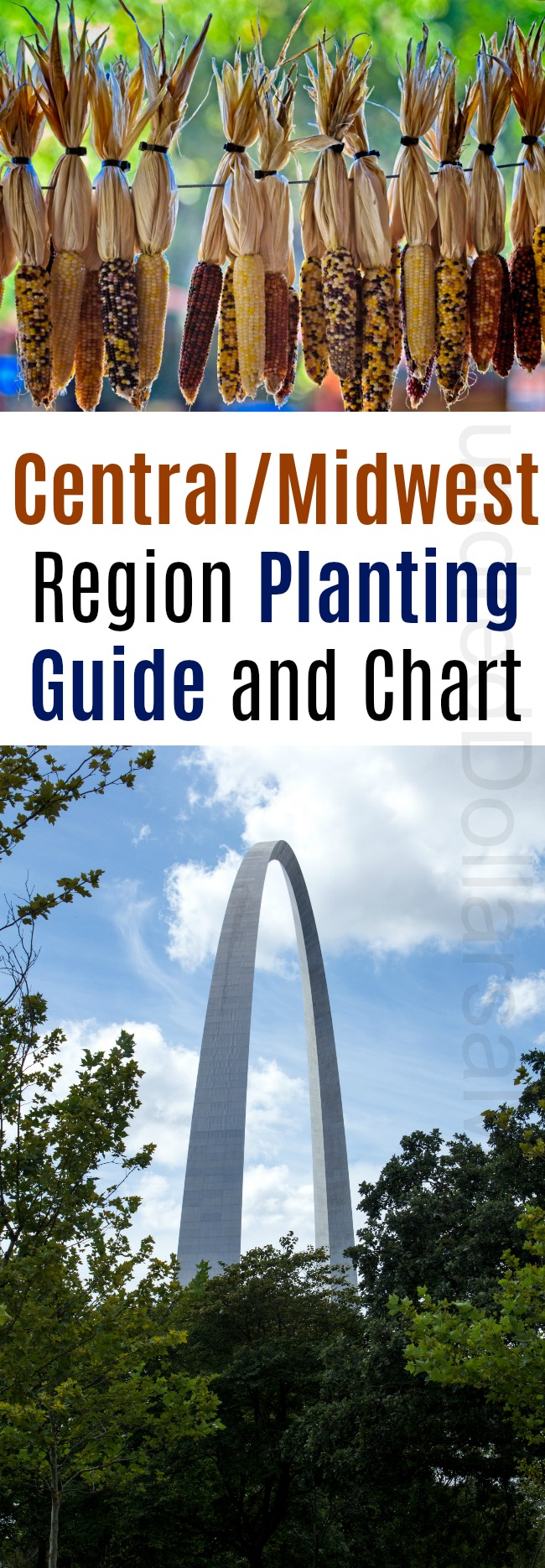 Central/Midwest Region Planting Guide