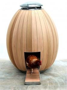 Egg Coop