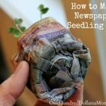 How to Make Newspaper Seedling Pots