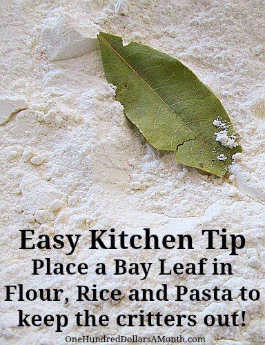 How to keep bugs out of flour