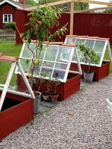 Window Greenhouse