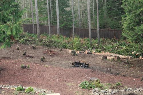 backyard garden blogs