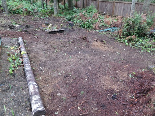 backyard garden space