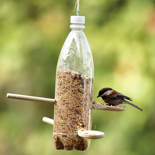 bird feeder homemade 1