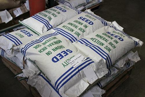 bulk seeds