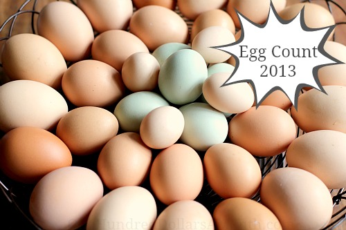 egg count 2013