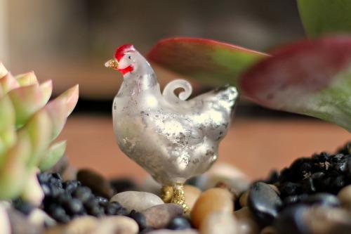 glass chicken