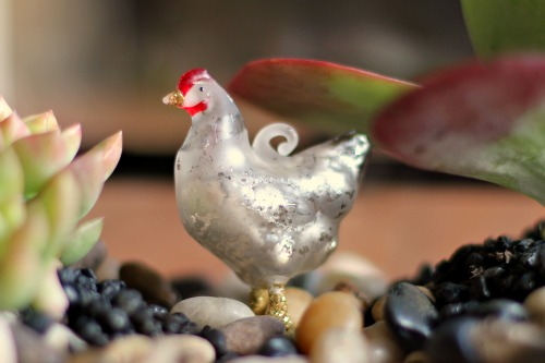 glass chicken