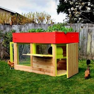 kippen house