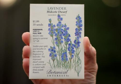 lavender seed packet