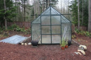 magnum glass greenhouse glass gardener tacoma