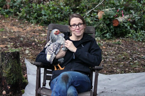 Raising Backyard Chickens – Mavis and Picasso
