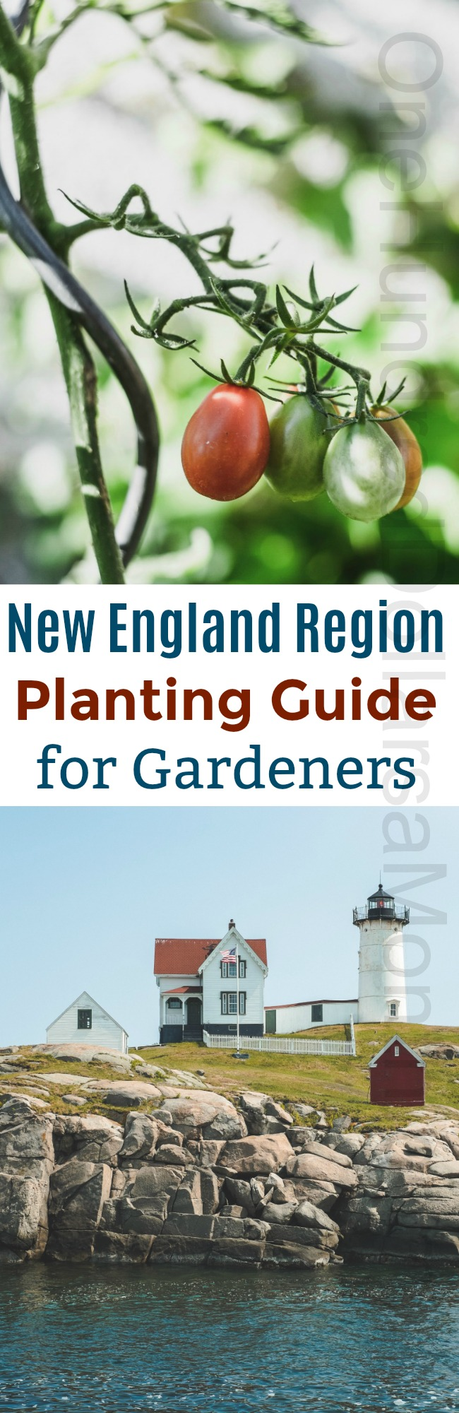Maritime Canada and New England Region Grow Guide