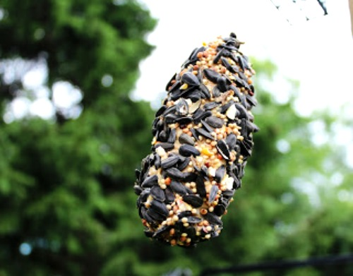Easy Kids Crafts – DIY Bird Feeders Ideas