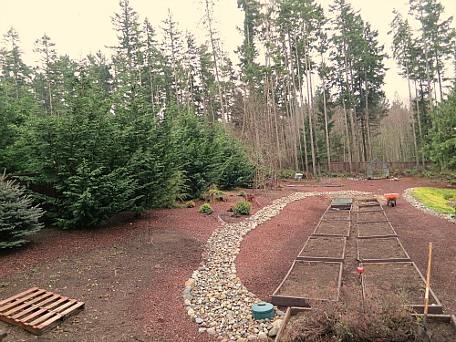 Mavis Butterfield | Backyard Garden Plot Pictures – Week 2 of 52