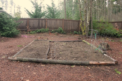 raised garden beds seattle