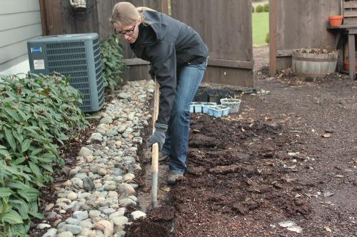 Mavis Garden Blog   Removing A Rock Border   One Hundred Dollars A Month