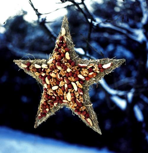 star bird feeder