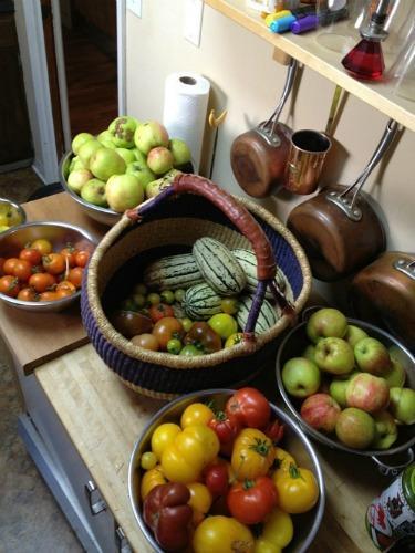 Mavis Mail | Gardening in Tacoma – Lisa Sends in Her Photographs