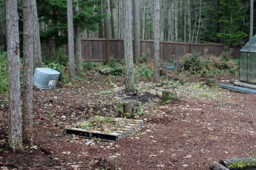 wooded-backyard2 Ideas For Wooded Backyard Landscape on ideas for muddy backyards, ideas for sloped backyards, ideas for sloping backyards,