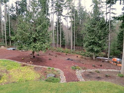 1000 images about garden ideas on pinterest concrete for Landscaping ideas for wooded areas