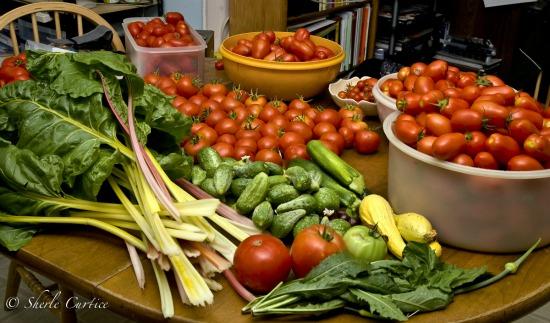 Mavis Mail – Bob and Sherle From California Share Their Vegetable Garden Photos