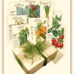 container garden seeds