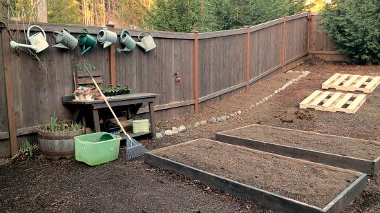 Mavis Butterfield | Backyard Garden Plot Pictures – Week 9 of 52