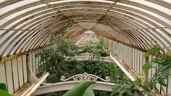 greenhouse patina