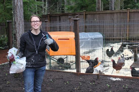 mavis butterfield raising chickens