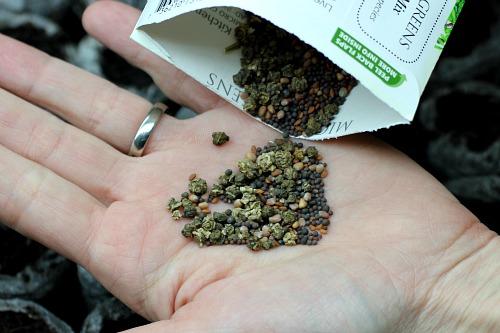 micro greens seeds