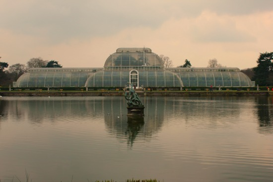 palm house green house kew gardens