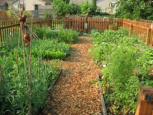 Mavis Mail – Robin From Columbus, Ohio Sends in Beautiful Garden Photos