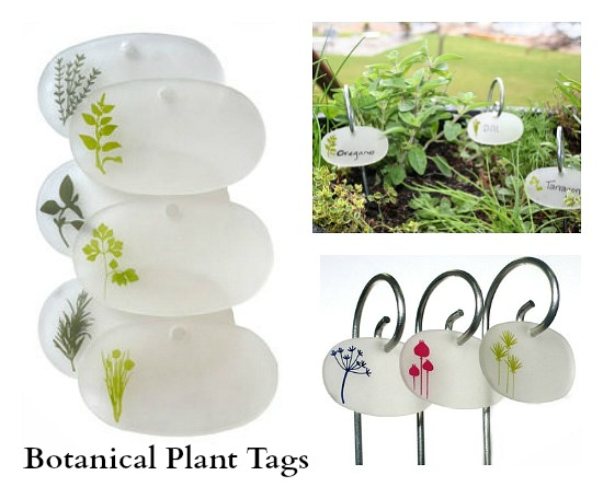 Botanical Plant Tags