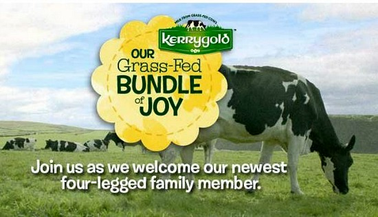 Kerrygold Grass-Fed Bundle of Joy Name Contest