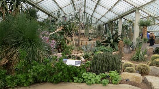 Kew Royal Botanic Gardens – Succulents