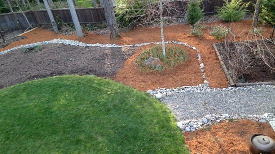 backyard orange bark