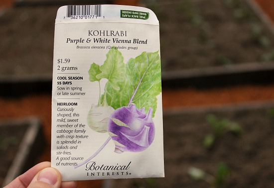 botanical interests kohlrabi seeds purple and white