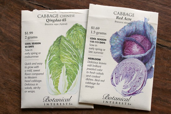 cabbage seed packets