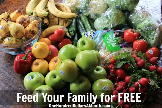 feed your family for free mavis