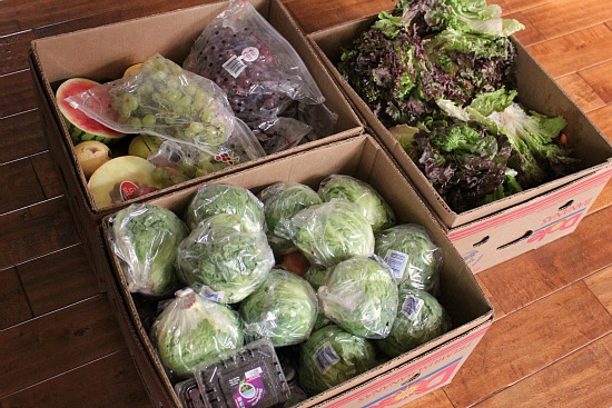 Reclaimed Food Show and Tell – FREE Produce