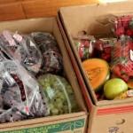 free produce food waste