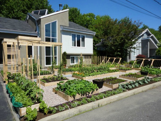 Is Having a Garden in the Front Yard Illegal?